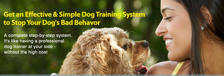 Get an Effective and Simple Dog Training System to Stop Your Dog's Bad Behavior