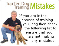Top Ten Dog Training Mistakes